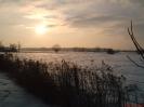 Pastwisko zimą_1