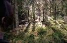 Guciów Roztoczański Park Narodowy_1