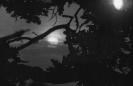 Księżyc_1
