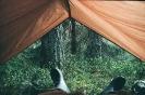 Namiot świt_1