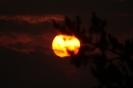Zaćmienie słońca przez wenus_1